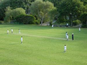 Mujumdar Cricket Academy Team in South Africa